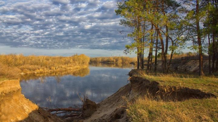 Разлив и «Скандинавия»: в Волгоградской области запечатлели красоту прихода весны — фоторепортаж