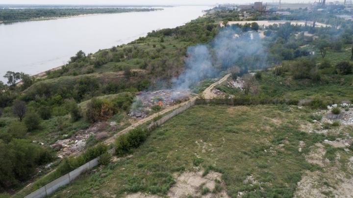 В мэрии Волгограда пообещали расчистить берег Волги от «мусорного ассорти»