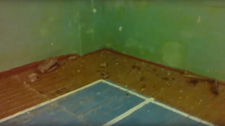 С потолка спортзала в Марьяновке обвалились куски бетона