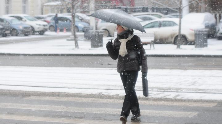 В Гидрометцентре рассказали, сколько снега выпало в Екатеринбурге