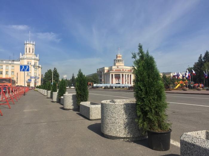 Центр Кемерово украсили вечнозелёные деревья в вазонах (фото)
