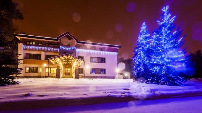 В парк-отеле «Сосновый бор» рассказали, чем заняться на новогодних каникулах