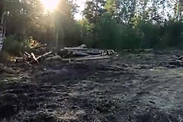 Земля принадлежит Березовскому району
