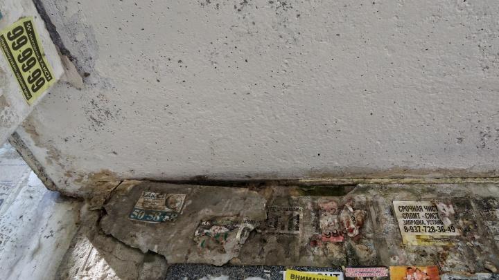 «Ждем, когда упадет»: на юге Волгограда обмякший козырек второй год грозит рухнуть на головы жильцам