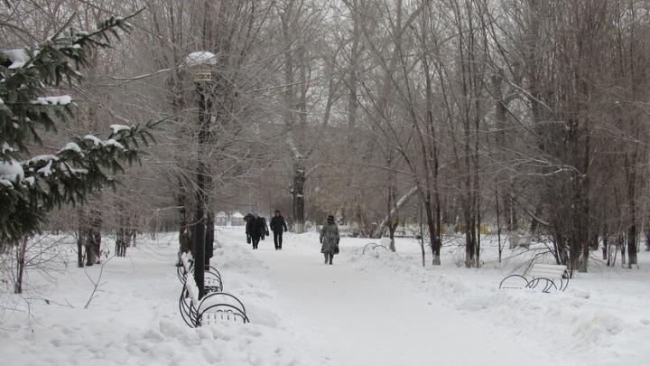 В Кургане первая неделя зимы будет теплой