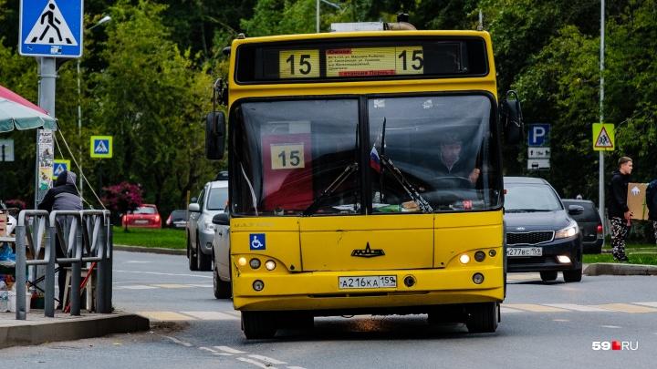 Власти Перми продолжают переговоры с перевозчиком, который отказался от маршрутов до Закамска