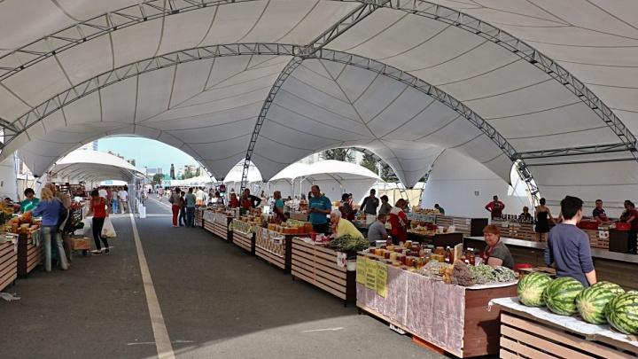 В Самаре решили увеличить количество сельскохозяйственных ярмарок