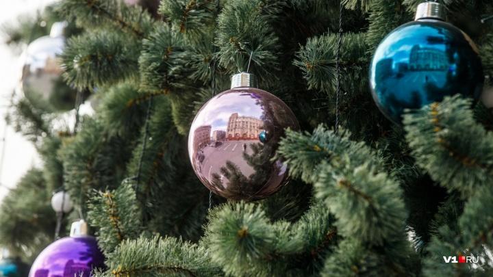 В Кировском районе неизвестные вандалы разбили украшения на елке