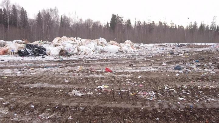Чернушинский полигон может «выдохнуть»: в Прикамье мусор будут свозить еще на пять свалок