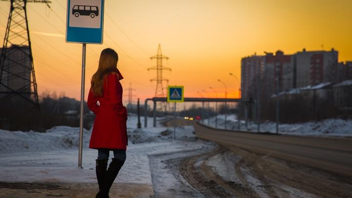 Новосибирцам предложили дать название новой остановке на улице Георгия Колонды