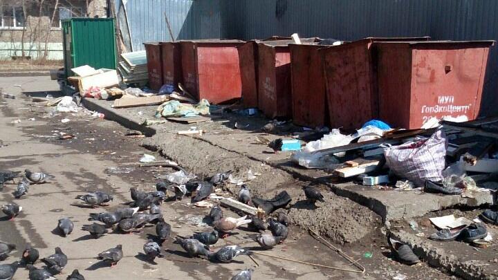 «Будем мыть контейнеры и бороться со свалками»: челябинцам поднимут тариф за вывоз мусора