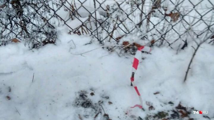 «С проклятьями ложимся»: челябинцев, выступающих против дороги через сады, встревожила разметка леса