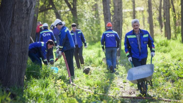 Красноярский экомарафон пришел в сквер Тепла и Света