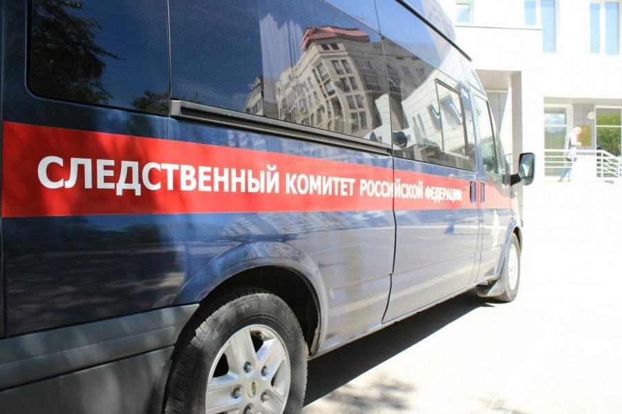 Под Новосибирском обезумевшая мать задушила своих детей