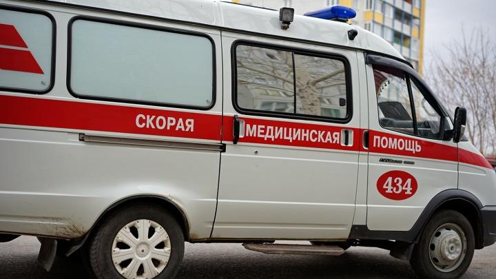 В Омске скорая увезла 8-летнего школьника после падения с дерева