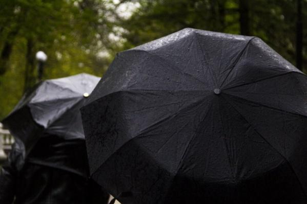 Непогода может спровоцировать обрывы ЛЭП и падение деревьев