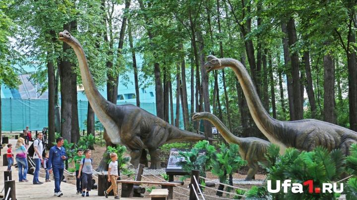 Зубы, когти и хвосты: в уфимском лесу поселились динозавры