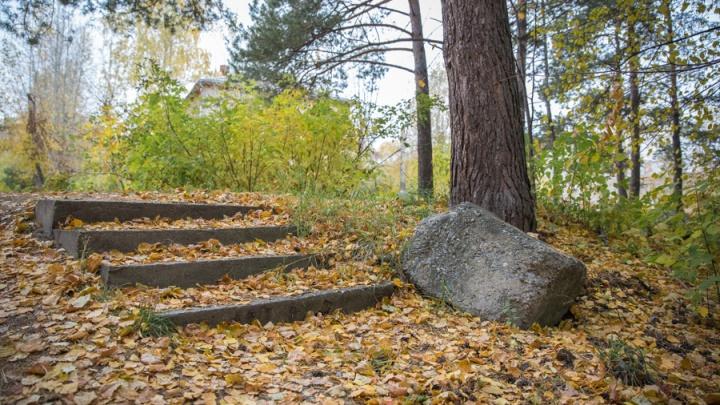 Тепло и мокро: в выходные в Новосибирск придёт долгожданное потепление