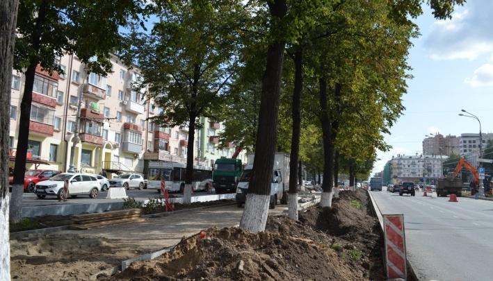 В Перми на Комсомольском проспекте опять рубят липы — но теперь«в ночи, пока никто не видит»