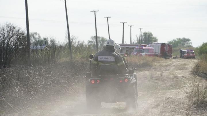 Погибшая природа: публикуем фотографии последствий пожара в Кумженке