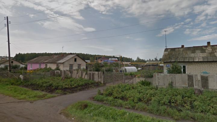 Многодетным семьям начали выделять бесплатную землю в пригороде Челябинска