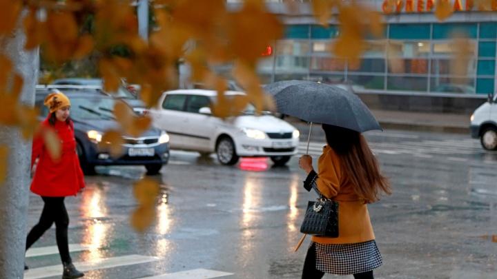 Теплый ветер принес дожди: какую погоду ждать в Башкирии