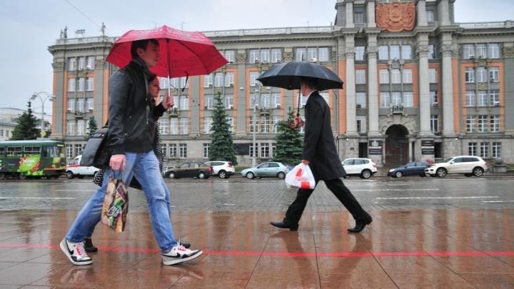 В последнюю неделю весны в Екатеринбурге будет холодно, ветрено и дождливо