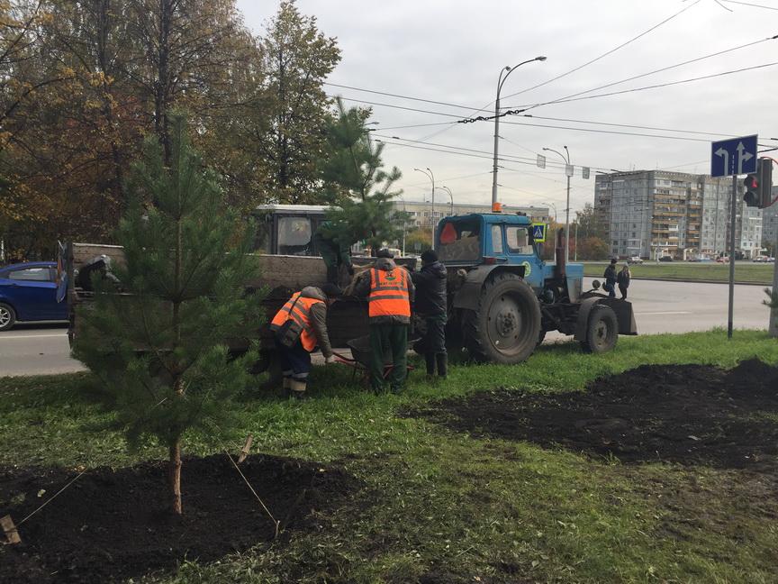 ВКемерово установили новые парковые осветительные приборы