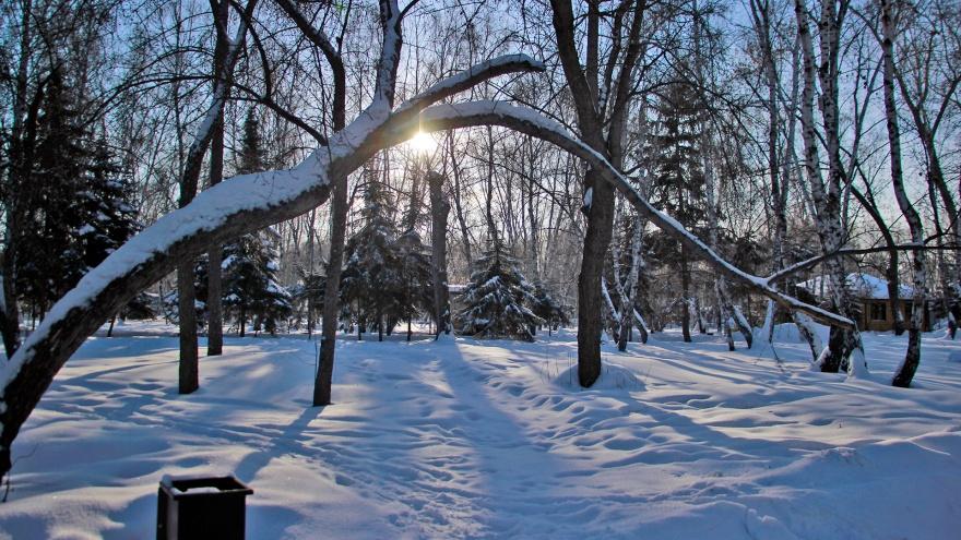 Хаос в общественном транспорте, морозы и эвакуации: топ главных событий ушедшей зимы
