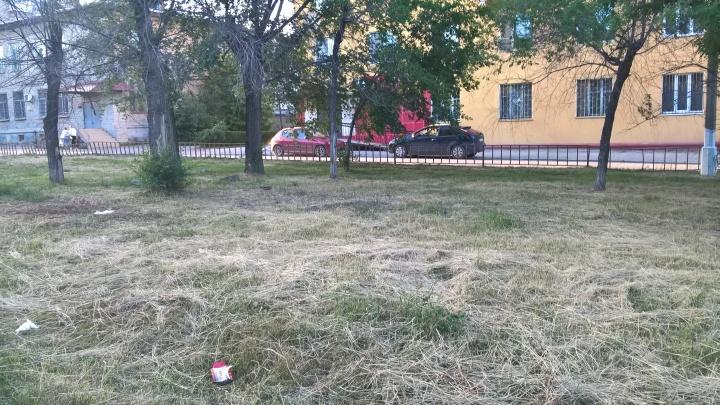 «Свинарник, а не зона отдыха»: сквер в Краснооктябрьском районе Волгограда зарастает мусором