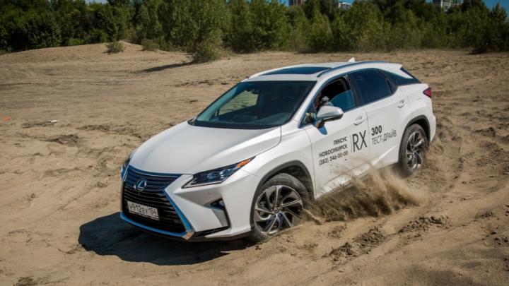 Переходим на джипы: новосибирцы полюбили подержанные Lexus RX и Honda CR-V