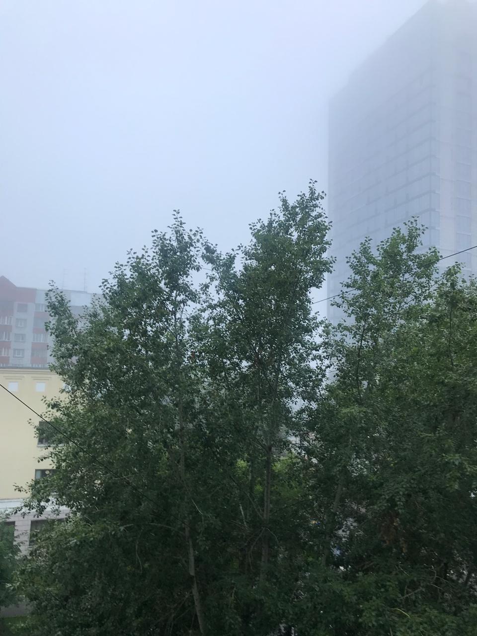 Туман на улице Советской