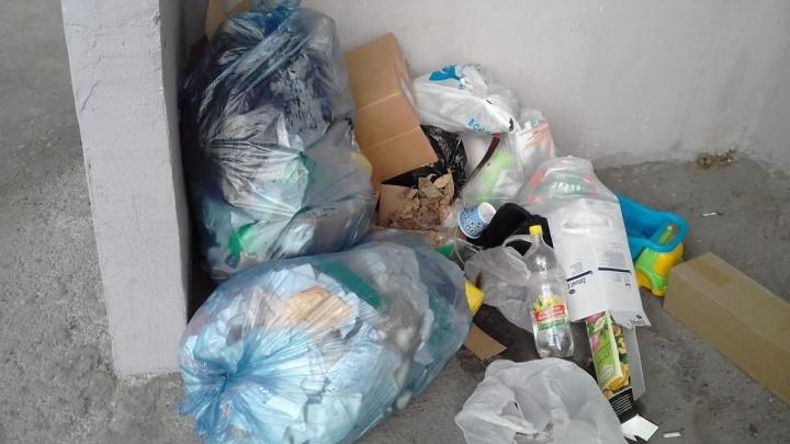 Штраф или приостановка деятельности грозят юрлицам за отсутствие договора на вывоз мусора