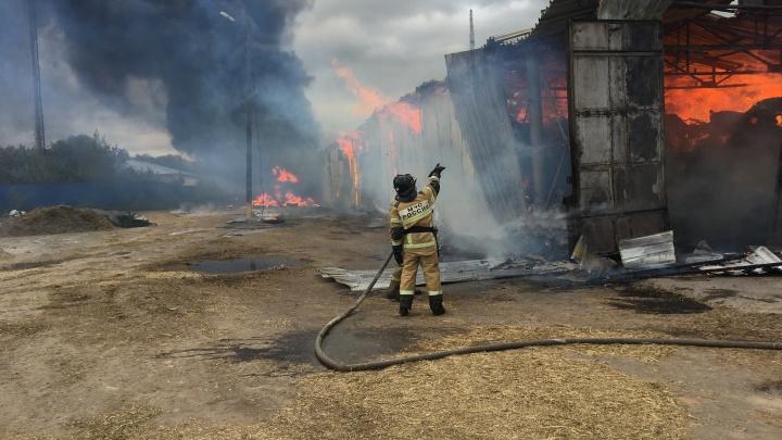 Из-за сигареты сгорело 600-метровое здание в Кстове — с огнём боролись несколько пожарных бригад