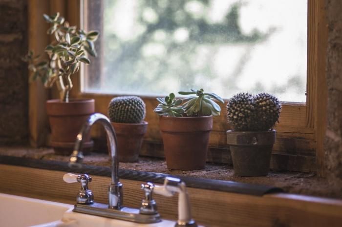 «Сушим» квартиру: как бороться с влажностью дома