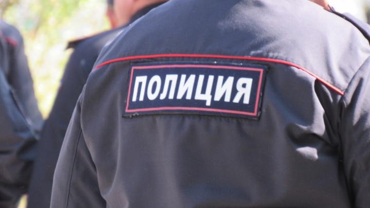 В Зауралье сельчанин ради брата бросился на полицейских с топором