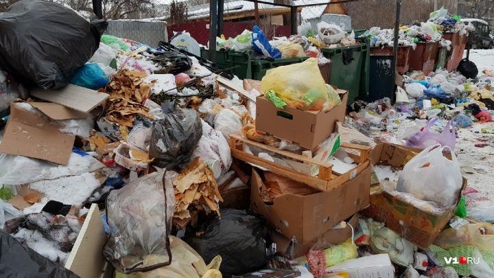 Проследим сами: волгоградцы проконтролируют вывоз мусора во всех районах города