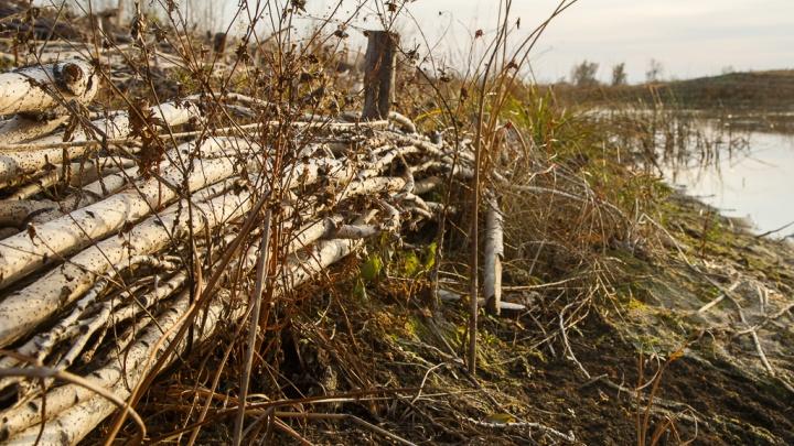 «Забор придавил старушку»: водитель «шестерки» влетел в ограду в Волгоградской области