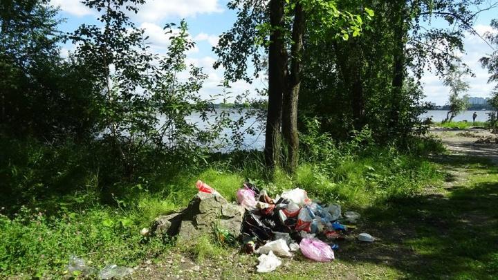 Санитарные врачи покопались в екатеринбургской земле и нашли пестициды и тяжелые металлы