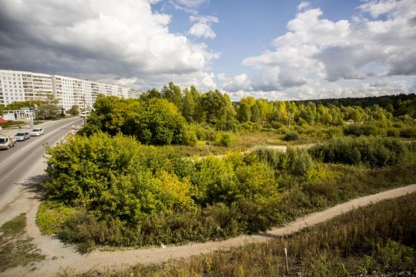 Местные жители надеются сохранить зелёную зону в пойме речки, но планы на неё уже фактически сформированы
