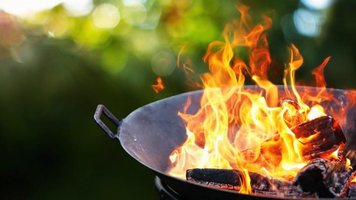 Четыре блюда от шефа, которые можно приготовить на огне