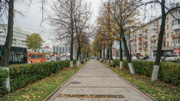 «Нужно убрать пешеходную часть». Градозащитник Галицкий придумал альтернативную версию Компроса