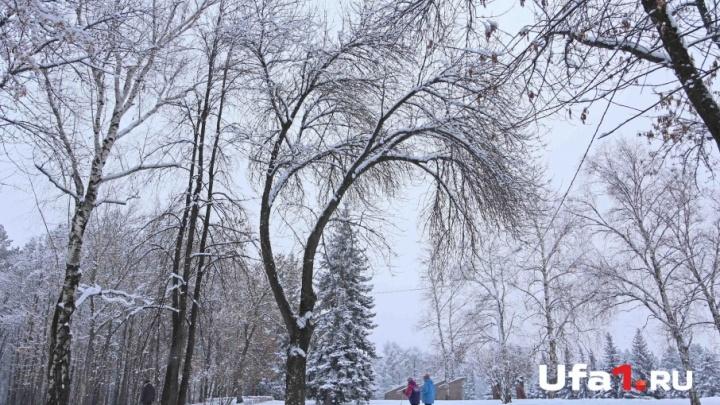 Сильные порывы и метель: в Башкирии станет еще холоднее