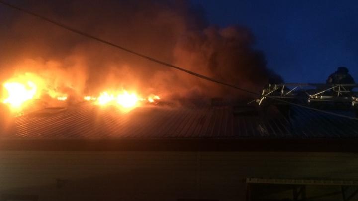 В районе аэропорта Рощино горело здание торгово-промышленной компании