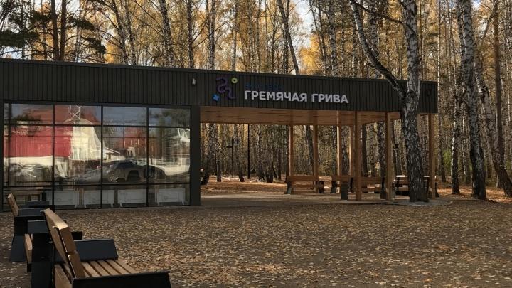 «Всё начинается с тропинки»: общественник объяснил, как Красноярск лишается пригородных лесов
