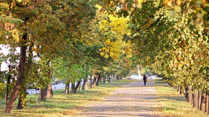 Последние тёплые деньки: синоптики Башгидромета рассказали о погоде на выходные