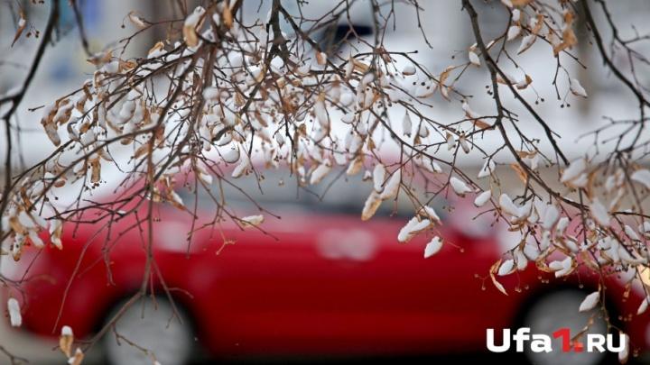 Какая погода ждет жителей Башкирии на ноябрьских выходных