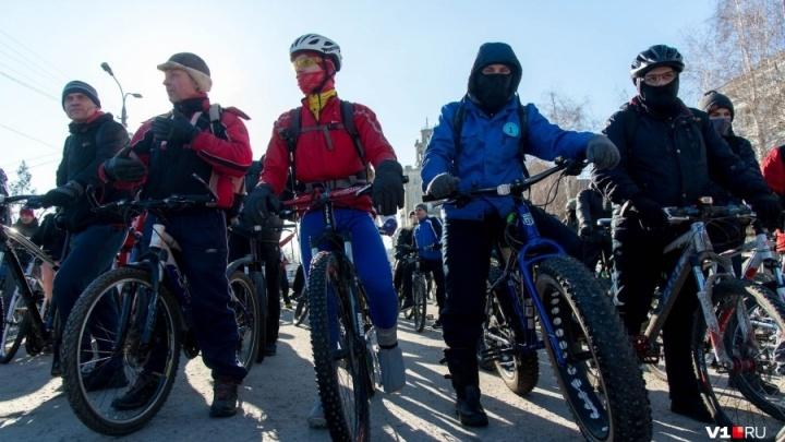 Волгоградцам разрешили бесплатно везти велосипеды на велопарад в трамваях и троллейбусах