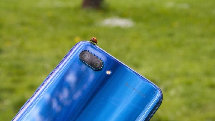 Цвет телефона — синий: ярославцы в тренде с Киркоровым