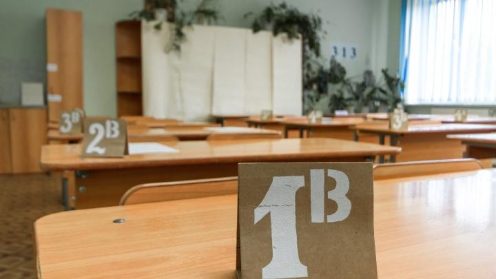 Задачка на скорость. В Челябинской области поставили рекорд по заполнению заявления в первый класс